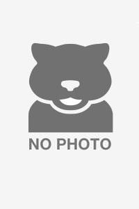 Cathy Engelkes