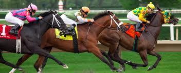 Arlington Park Horse Races